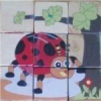 121-05-PuzzleBlockSerangga